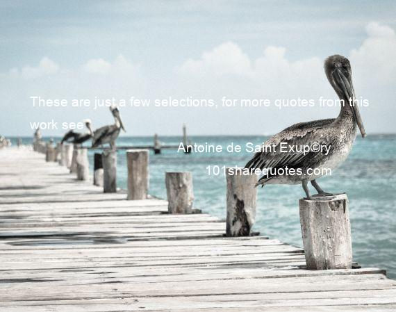Antoine de Saint Exup©ry - These are just a few selections, for more quotes from this work see