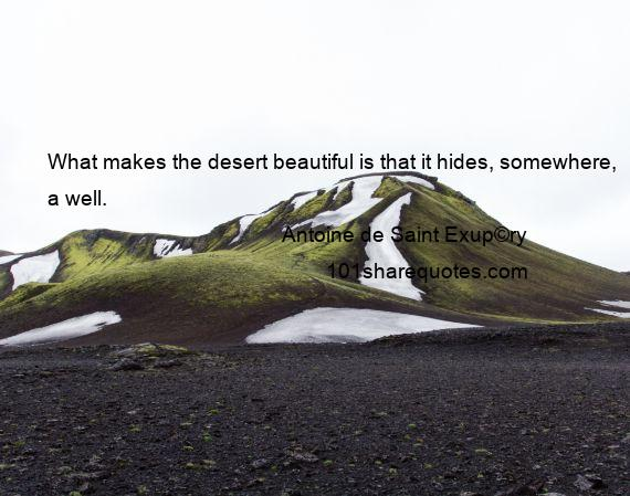 Antoine de Saint Exup©ry - What makes the desert beautiful is that it hides, somewhere, a well.